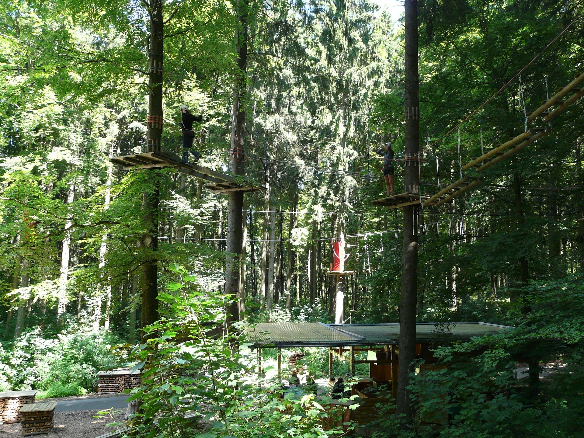Adventure course in the trees