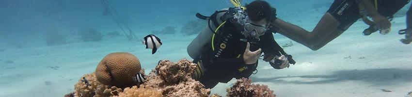Lanzarote opens Europe's first underwater museum