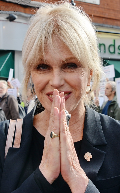 Joanna Lumley voted top travel companion for the over 50s